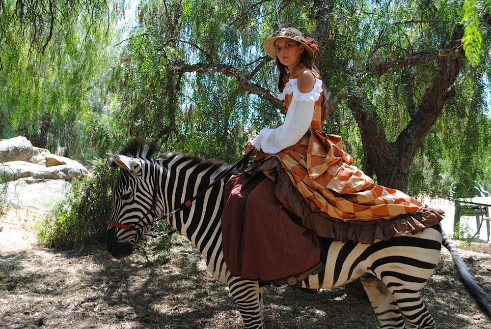 lady riding a zebra